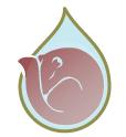 Icon for package FluentNHibernate