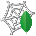 Icon for package MongoDB.Web