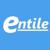 entile-server icon